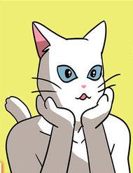 Hoàng Tử Vương Quốc Mèo